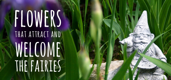 Flowers that Attract and Welcome the Fairies into your Garden