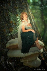 The Forest Fairy Tree Fairy Photo