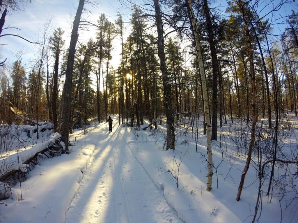Sandilands Provincial Forest Ski Trail