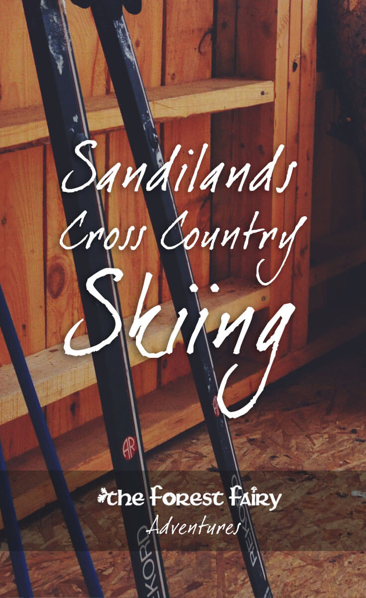 Cross Country Skiing Adventure in the Sandilands